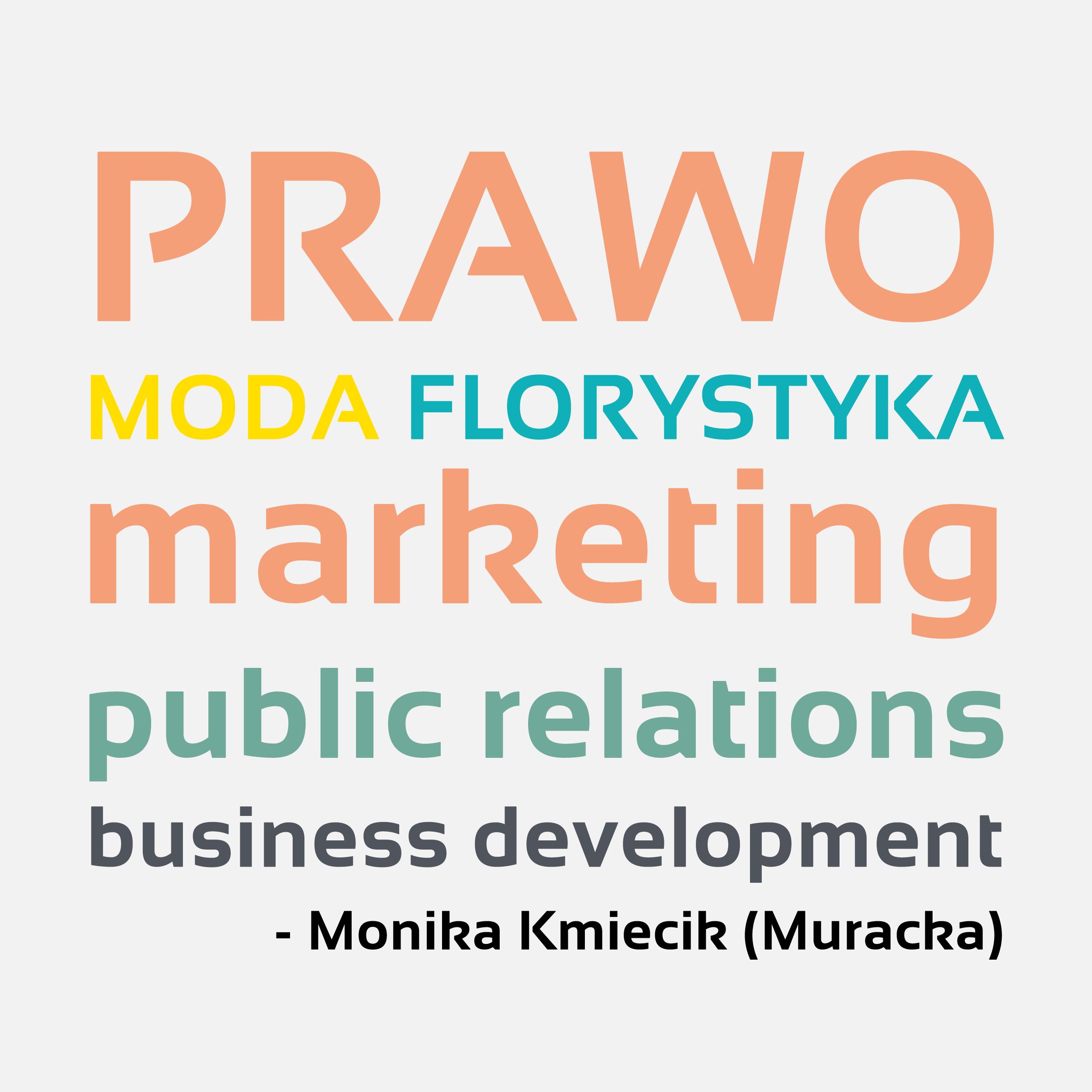 moj-swiat-zawodowy-Monika-Kmiecik-Murackal-marketing-dla-prawnikow.png